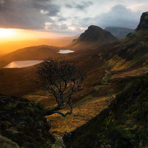 Forced Aura Quirang Lone Tree Isle of Skye sunrise
